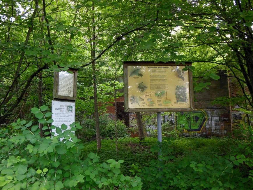 """Am Südlichen Anfang des Wanderweges stehen Hinweisschilder: Rechts für die Fledermausunterkunft und rechts für den Bahnhof, welcher in einem """"Landschaftsschutzgebiet"""" liegt."""