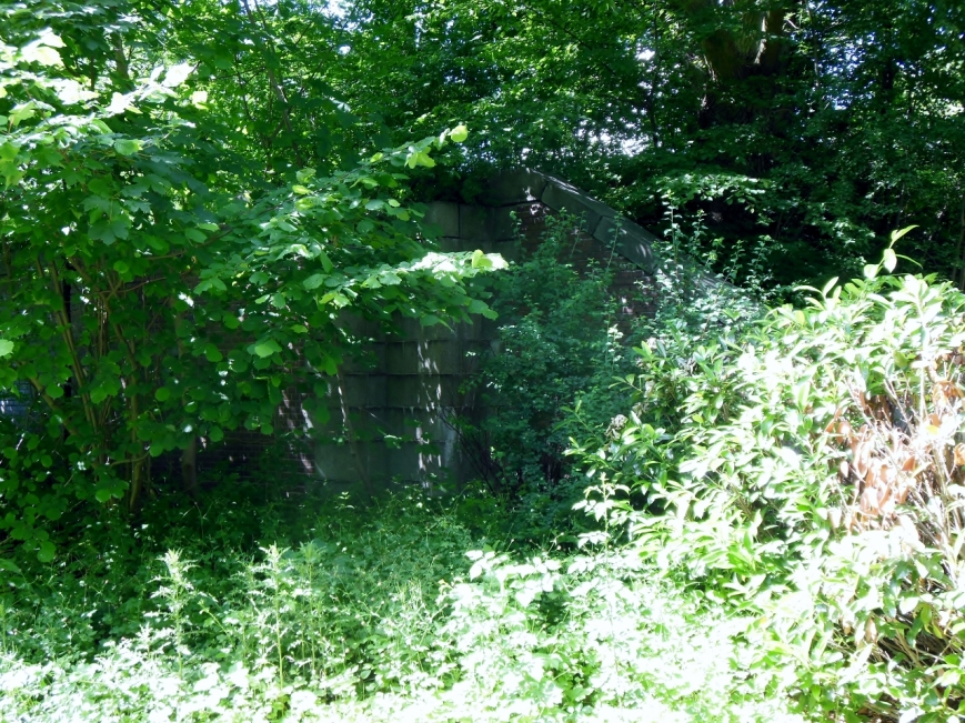Hinter den Bäumen ist das Südost-Ende des Bahndamms zu sehen.