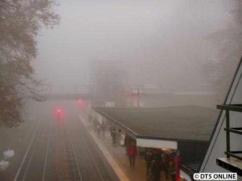 Wegen des Nebels kaum etwas zu erkennen...