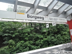 Borgweg, 25.05.2015 (4)