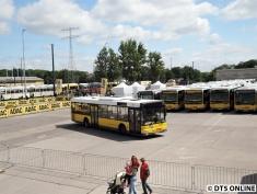 Bus-Fahrschule, BVG-Betriebshof Lichtenberg, 28.6.2015 (2)