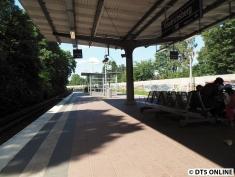 Friedrichsberg (S1)