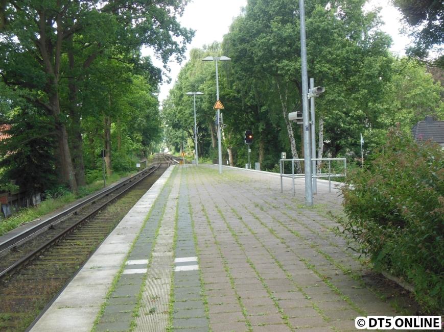 Hoheneichen (S1)