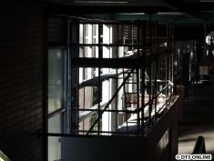 Blick zurück: Hier kann man schon in etwa die Struktur des neuen Eingangs sehen