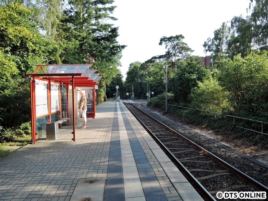 Bad Bramstedt Kurhaus, 06.08.2015 (10)