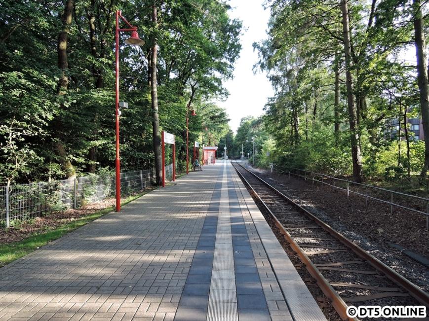 Bad Bramstedt Kurhaus, 06.08.2015 (12)