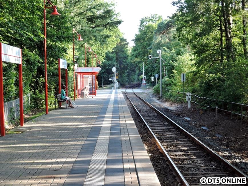 Bad Bramstedt Kurhaus, 06.08.2015 (13)