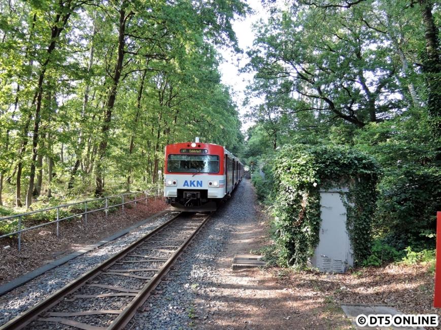 Bad Bramstedt Kurhaus, 06.08.2015 (14)