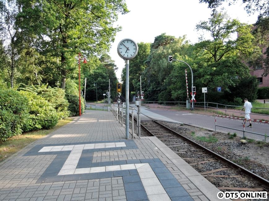 Bad Bramstedt Kurhaus, 06.08.2015 (4)