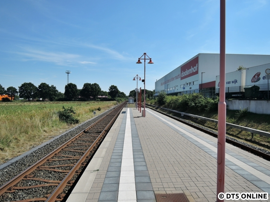 dodenhof, 06.08.2015 (10)