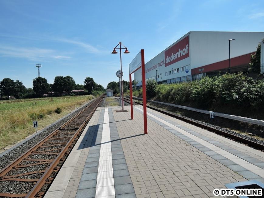 dodenhof, 06.08.2015 (11)