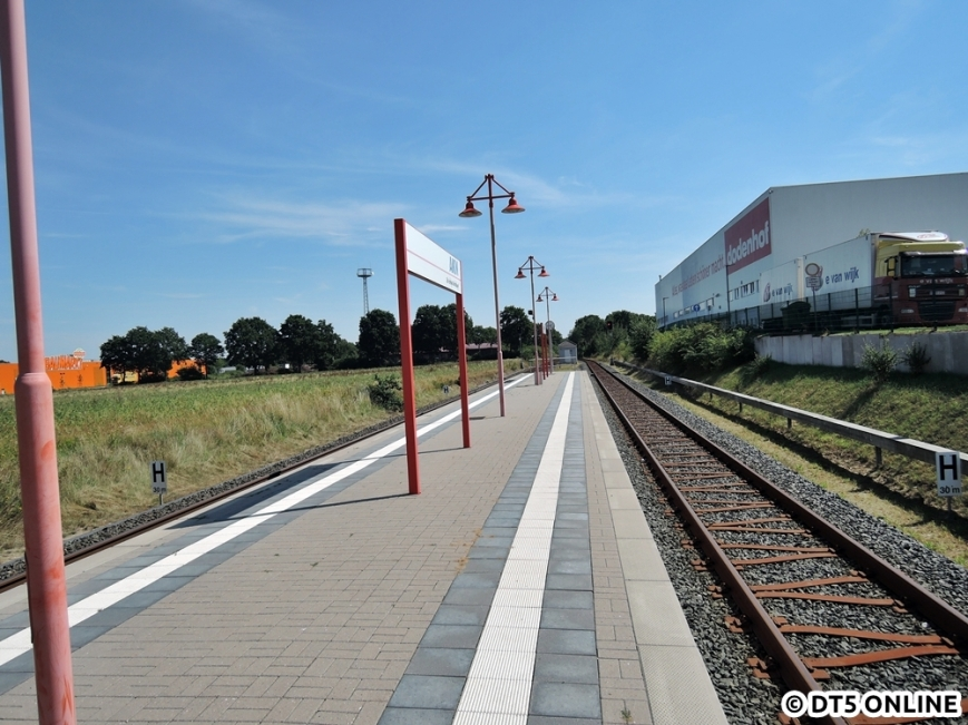 dodenhof, 06.08.2015 (8)