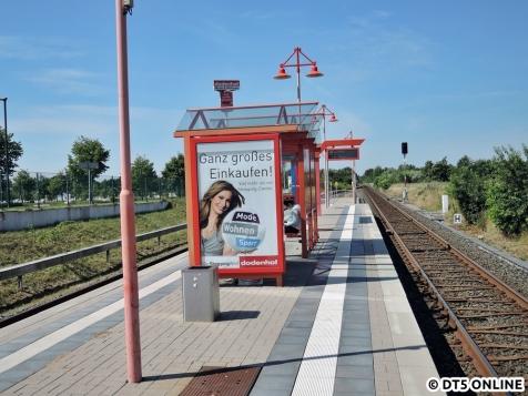 dodenhof, 06.08.2015 (9)