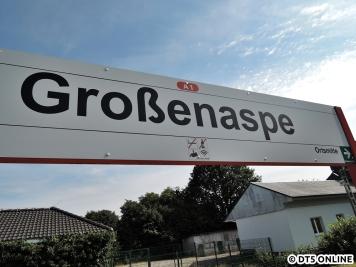 Großenaspe, 06.08.2015 (10)