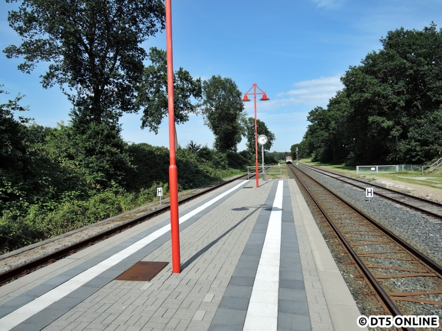 Großenaspe, 06.08.2015 (2)