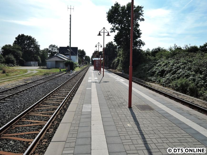 Großenaspe, 06.08.2015 (3)