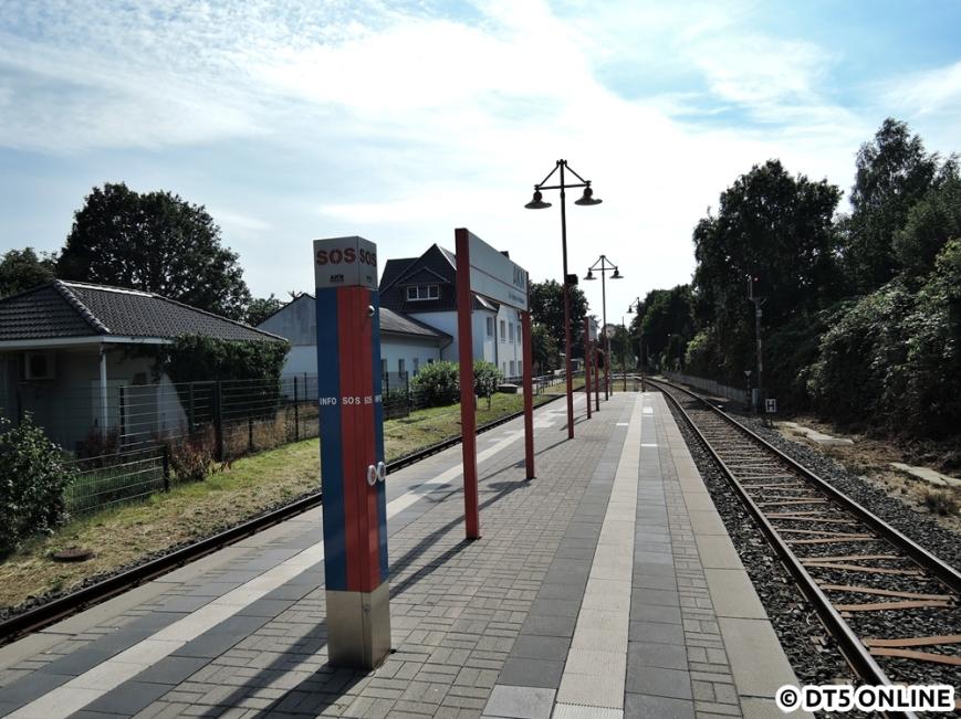 Großenaspe, 06.08.2015 (6)