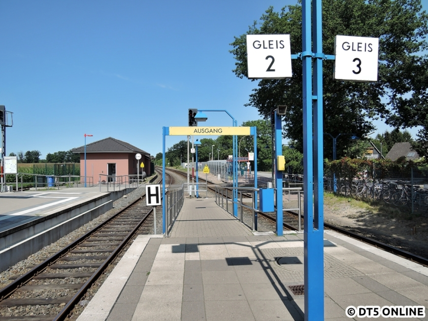 Ulzburg Süd, 13.08.2015 (10)