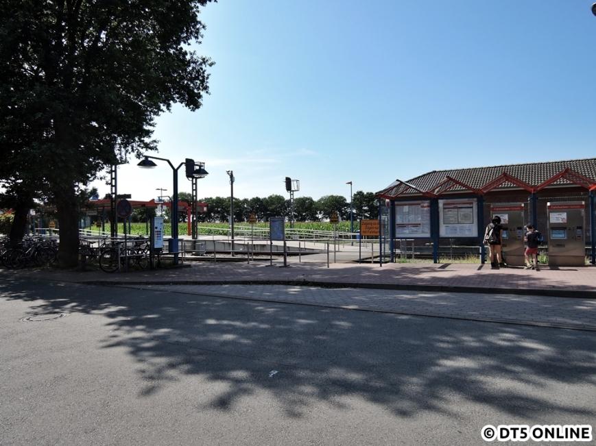 Ulzburg Süd, 13.08.2015 (13)