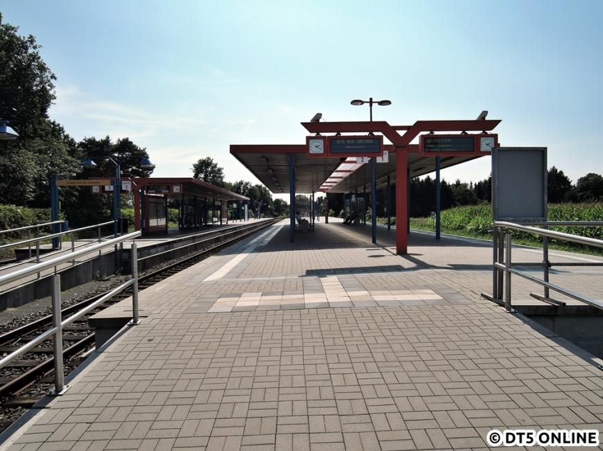 Ulzburg Süd, 13.08.2015 (14)