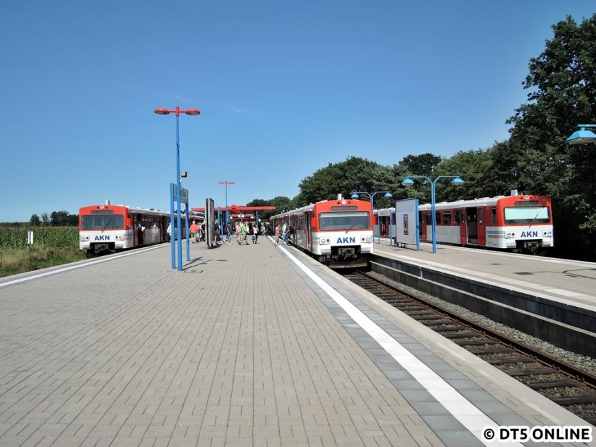 Ulzburg Süd, 13.08.2015 (17)