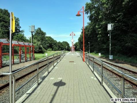 Wiemersdorf, 06.08.2015 (1)