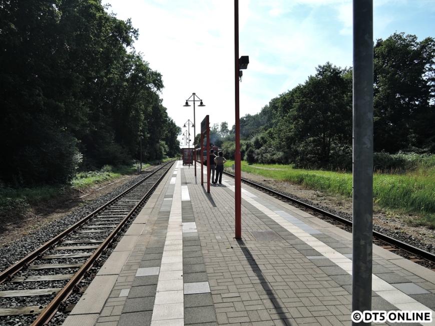 Wiemersdorf, 06.08.2015 (10)