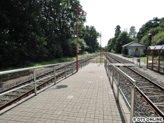 Wiemersdorf, 06.08.2015 (2)