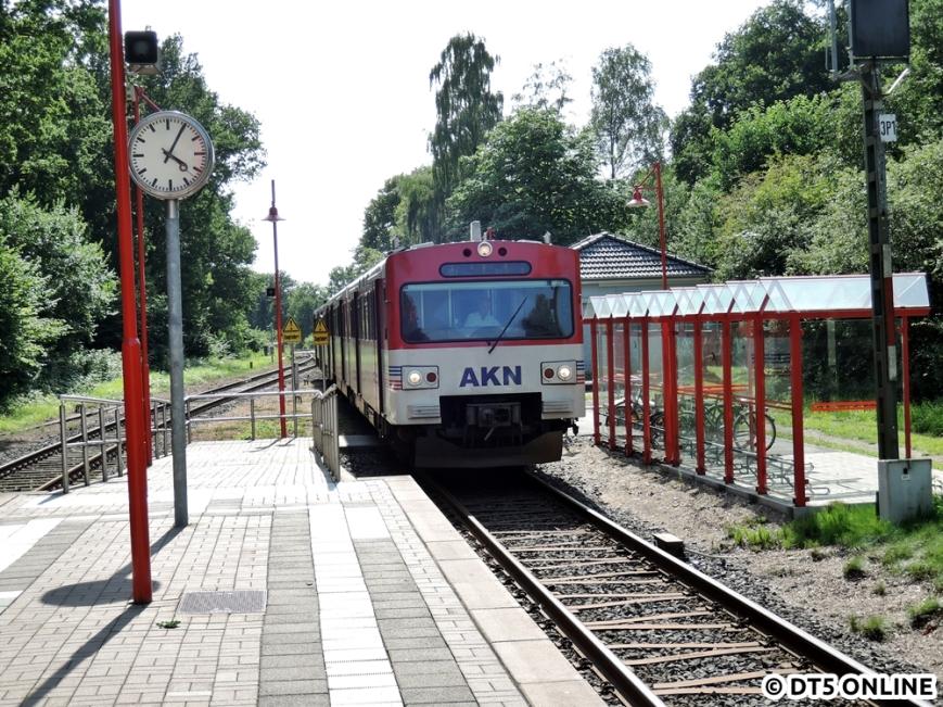 Wiemersdorf, 06.08.2015 (4)