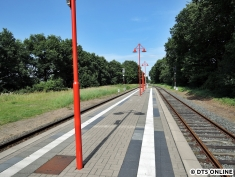 Wiemersdorf, 06.08.2015 (6)