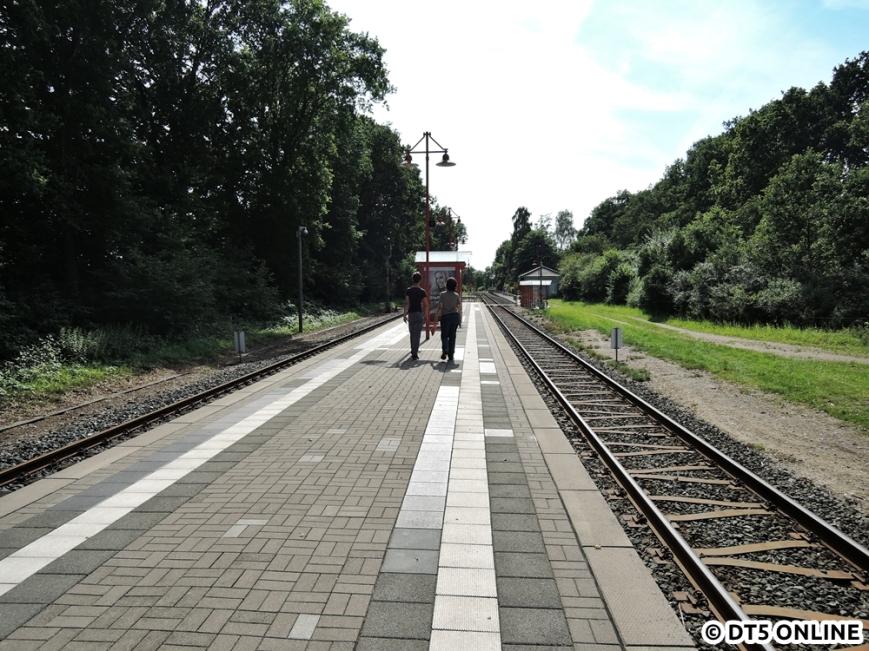 Wiemersdorf, 06.08.2015 (7)