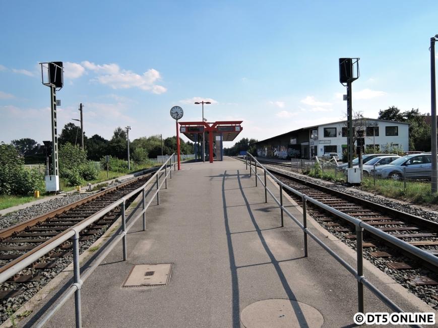 Bönningstedt, 03.08.2015 (11)
