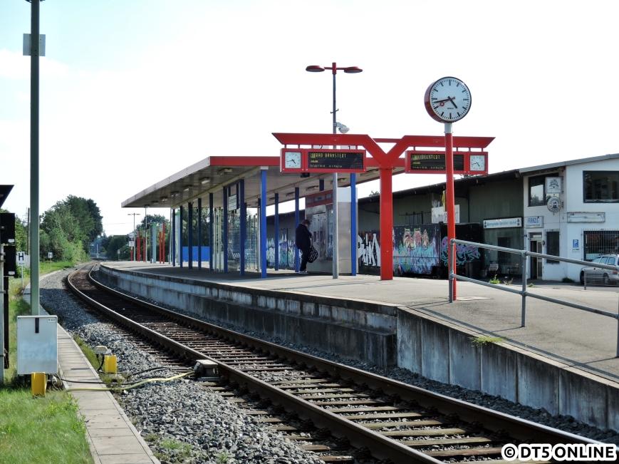 Bönningstedt, 03.08.2015 (12)
