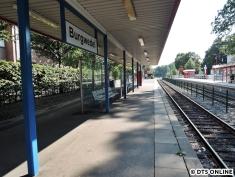 Burgwedel, 03.08.2015 (14)