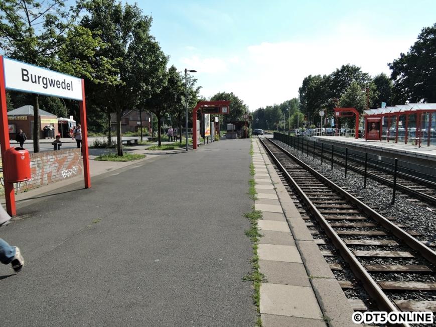 Burgwedel, 03.08.2015 (15)