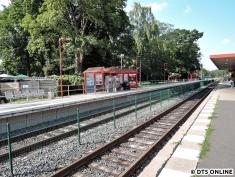 Burgwedel, 03.08.2015 (17)