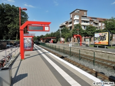 Burgwedel, 03.08.2015 (2)