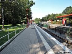 Burgwedel, 03.08.2015 (4)