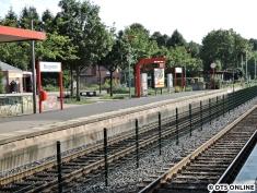 Burgwedel, 03.08.2015 (6)