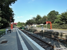 Burgwedel, 03.08.2015 (8)