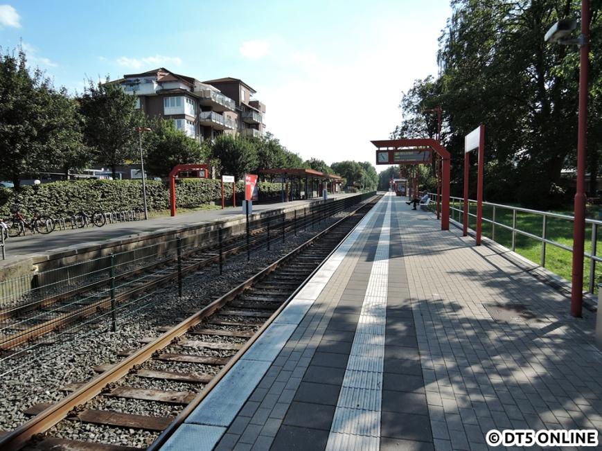 Burgwedel, 03.08.2015 (9)