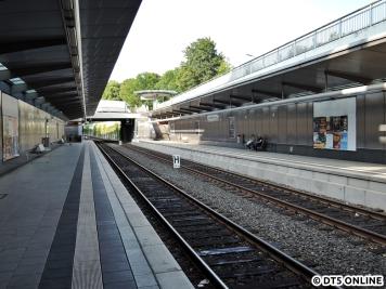 Eidelstedt Zentrum, 03.08.2015 (15)