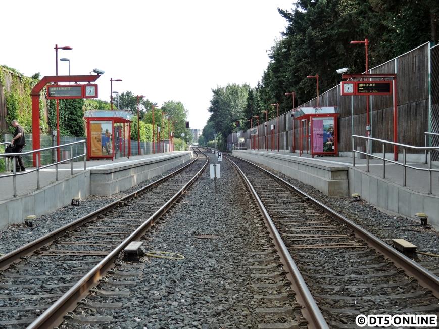 Hörgensweg, 03.08.2015 (12)