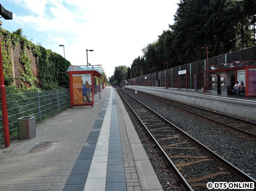 Hörgensweg, 03.08.2015 (14)