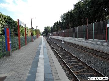 Hörgensweg, 03.08.2015 (15)