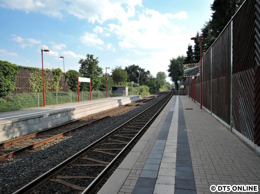 Hörgensweg, 03.08.2015 (3)
