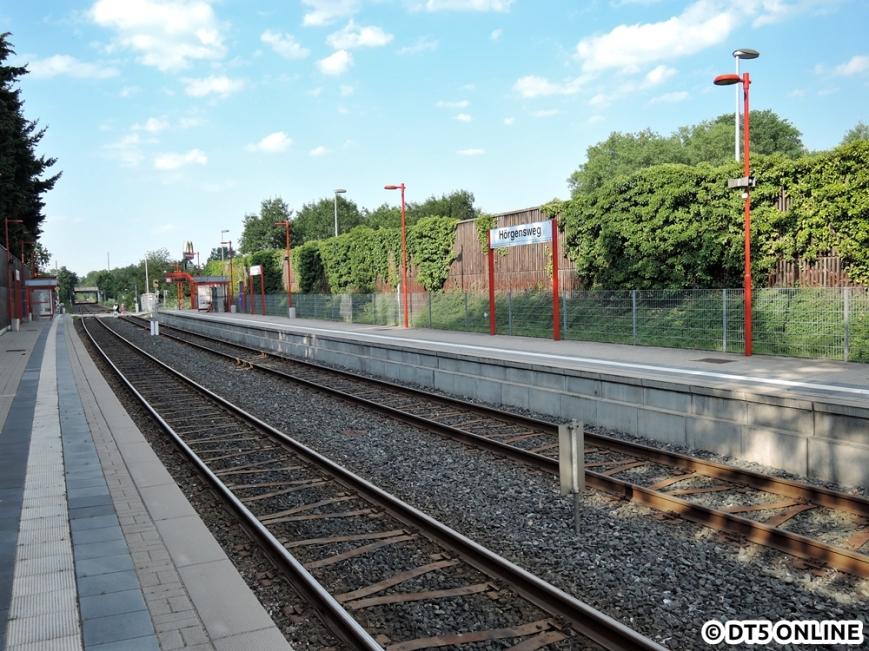 Hörgensweg, 03.08.2015 (4)