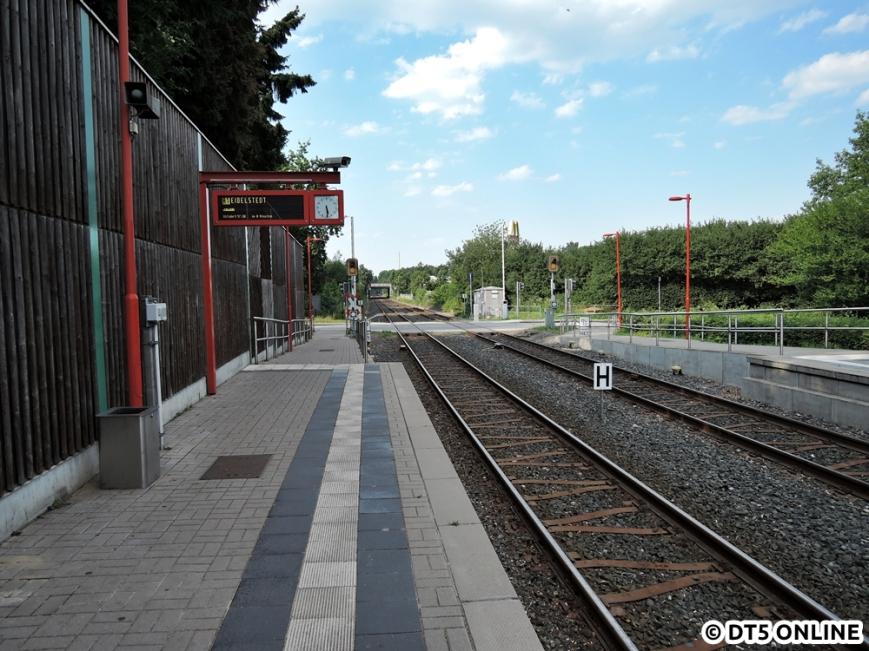 Hörgensweg, 03.08.2015 (8)