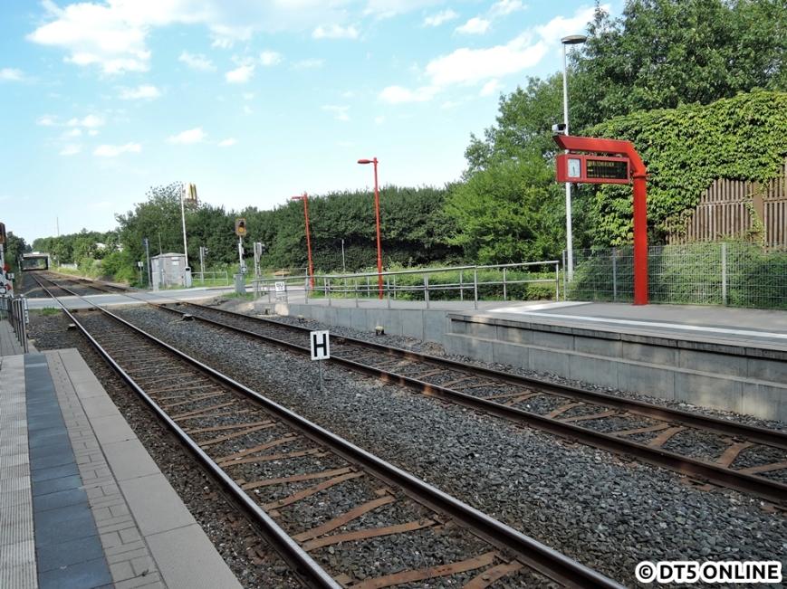 Hörgensweg, 03.08.2015 (9)