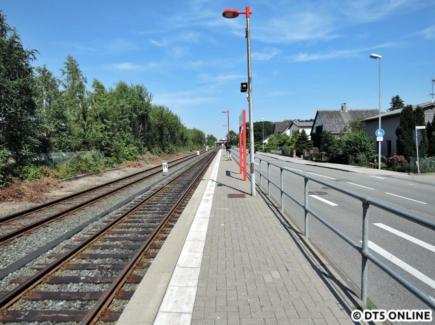 Tanneneck, 03.08.2015 (14)